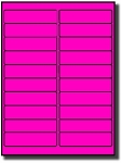 400 Fluorescent Neon Hot Pink Labels, 4 x 1 inches, 20 Sheets use Avery 5261® Template Laser Printers Only