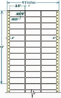 Compulabel® 130206 Continuous Labels, 2-1/2